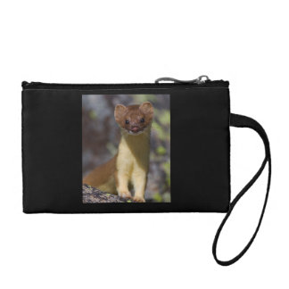 Long-tailed Weasel Coin Wallet