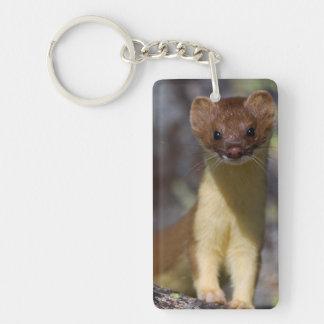 Long-tailed Weasel Double-Sided Rectangular Acrylic Keychain