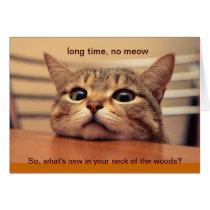 Long Time, No Meow Card