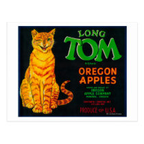 Long Tom Apple Crate LabelMonroe, OR Postcard