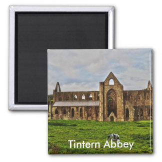Long View of Ancient Tintern Abbey, Wales, UK 2 Magnet