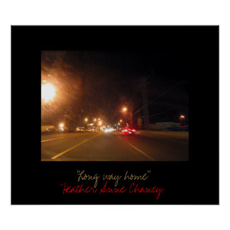 Long way home poster