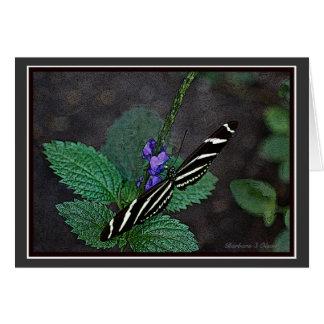 Long Wing Zebra Butterfly Card