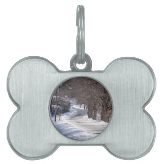Long winters road pet name tag