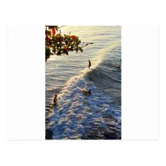 Longboard surfing scenic tropical beach wave postcard