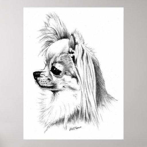 Longcoat Chihuahua Champion Poster