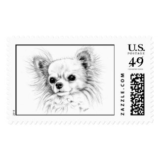 Longcoat chihuahua postage