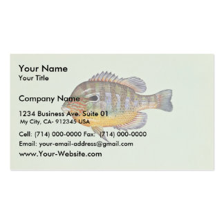 Longear sunfish Double-Sided standard business cards (Pack of 100)