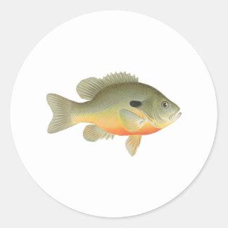 Longear Sunfish Logo Classic Round Sticker