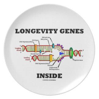 Longevity Genes Inside DNA Replication Humor Dinner Plate