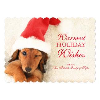 Longhair Dachshund Puppy Winking Card