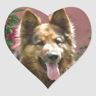 Longhair German Shepherd Heart Sticker
