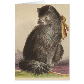 Longhaired Black Cat Card