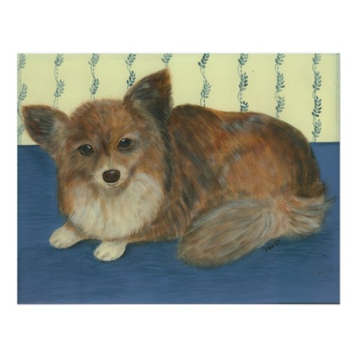 Longhaired Chihuahua Poster