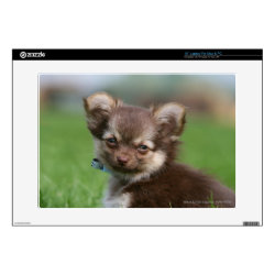 17' Laptop Skin for Mac & PC with Chihuahua Phone Cases design