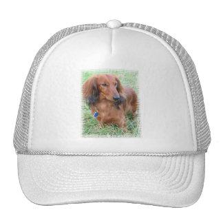 Longhaired Dachshund Baseball Cap Trucker Hat