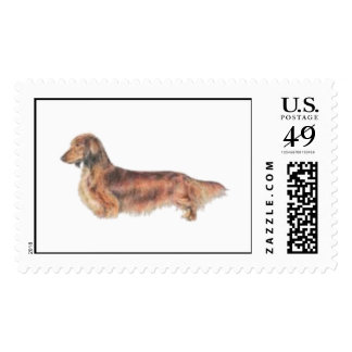 Longhaired Dachshund Postage