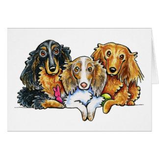 Longhaired Dachshund Trio Card