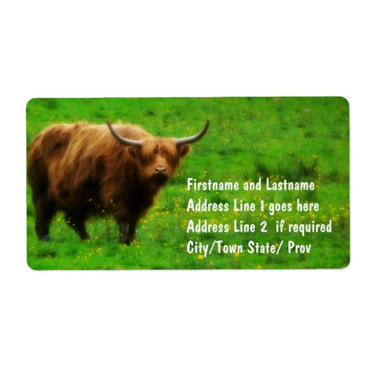 Longhaired LongHorn with Long Horns Label