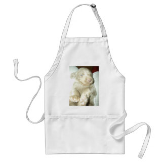 Longhaired Pup Weimaraner Adult Apron