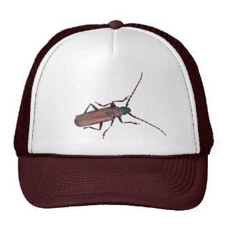 Longhorn Beetle Coordinating Items Trucker Hat
