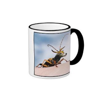 Longhorn bullbeetle mug