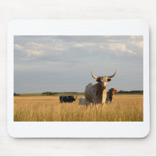 Longhorn cattle on the prairies mouse pad