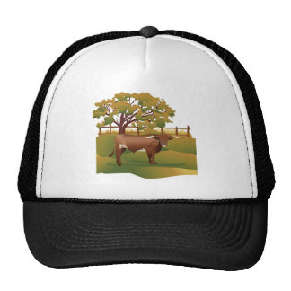 Longhorn Cattle on the Ranch Mesh Hat