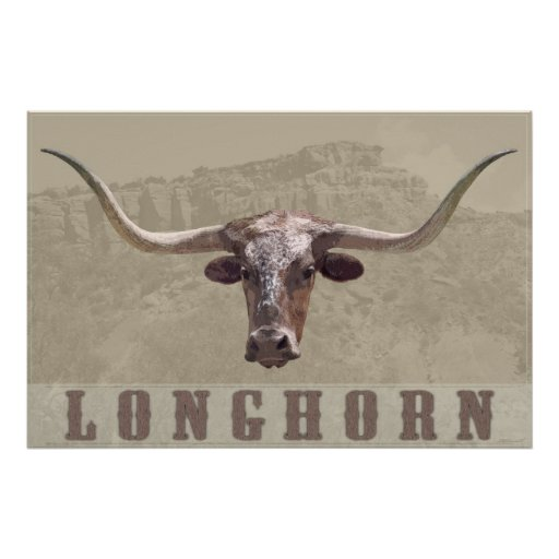 Longhorn Country Poster -60x40 -other sizes also