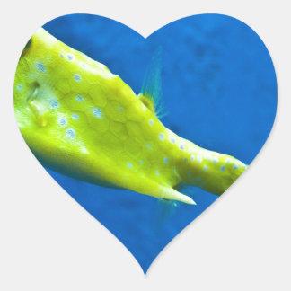 longhorn-cowfish heart sticker