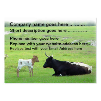 Longhorn cows calf cattle Business Cards