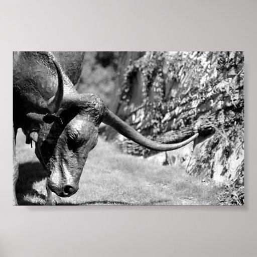Longhorn Eating Poster