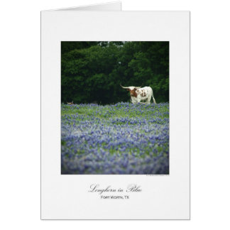 Longhorn in blue greeting cards