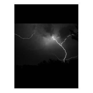 Longhorn Lightning Postcard