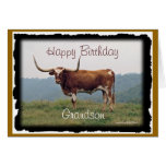 Longhorn on a hill-customize-any occasion cards