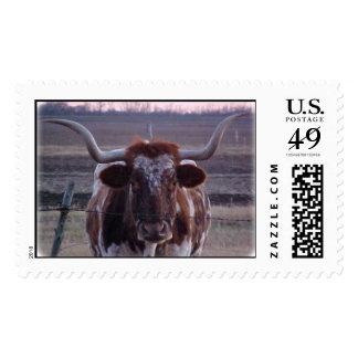Longhorn Postage Stamps