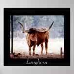 Longhorn Poster
