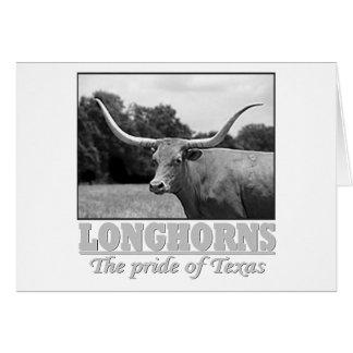 longhorn_pride cards