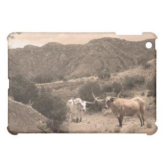 Longhorn Ravine Sepia iPad Case