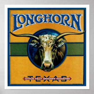 Longhorn Texas Poster