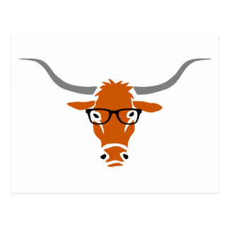 Longhorn with Hipster Glasses Postcard