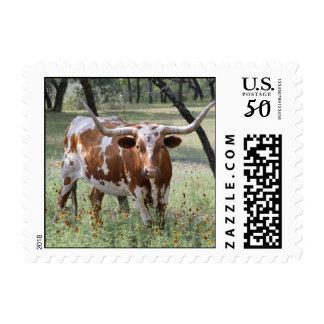 Longhorns Postage