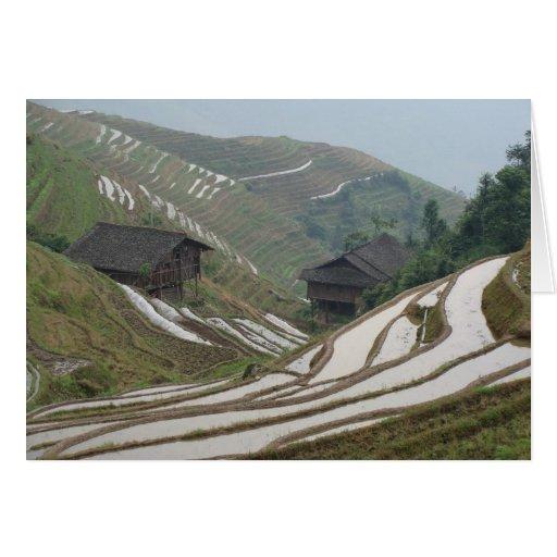 Longi Rice Terraces-Southern China-2 Card