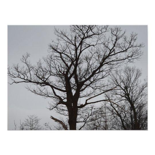 Longing Photo Print