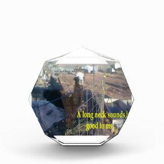 Longneck # 1 award