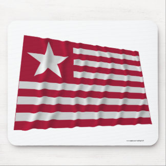 Long's Expedition Flag Mousepad