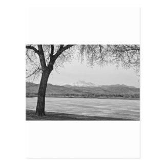Longs Peak Winter View Black and White Postcard