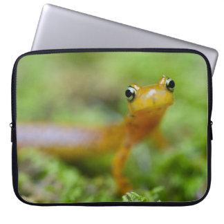 Longtail Salamander Laptop Sleeves
