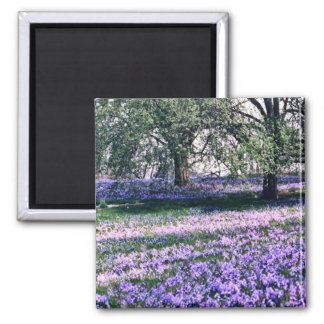Longwood Gardens in Spring 2 Inch Square Magnet