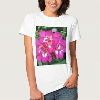 Longwood Gardens, PA Tee Shirt